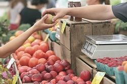 The Health Benefits of Farmers Markets, Blog, Stamford Health