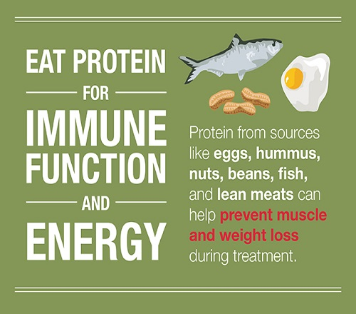 Nutrition Tips for Cancer Patients: Infographic