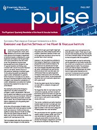 The Pulse - Fall 2017